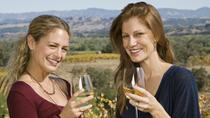 Mendoza Sparkling Wines Tour with Lunch, Mendoza, Private Sightseeing Tours