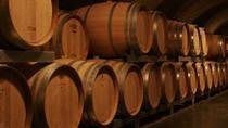 Mendoza Wine Tour with Lunch, Mendoza, Wine Tasting & Winery Tours