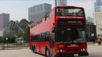Hop-on-Hop-off-Besichtigungstour: Stadtrundfahrt durch Chicago, Chicago, Hop-on Hop-off Tours