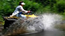 Big Island Side by Side ATV Tour, Big Island of Hawaii, 4WD, ATV & Off-Road Tours