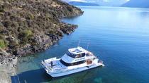 1-Hour Ruby Island Cruise and Walk from Wanaka, Wanaka, Day Cruises