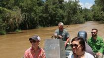 Eco Swamp Tour, New Orleans, Day Cruises