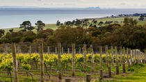 Bellarine Peninsula Small Group Wine Tour with 2 Course Lunch and Morning Tea, Melbourne, Wine ...