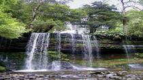 3-Day Tasmania West Coast Tour from Hobart: Strahan, Cradle Mountain, Launceston