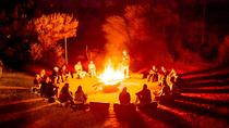 4-Day Red Centre Camping Safari from Alice Springs or Ayers Rock Including Kings Canyon, Alice ...