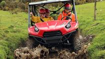 2 Hour Bush 'n Bog Track - BUGGIES, Greymouth, 4WD, ATV & Off-Road Tours