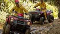 2 Hour Bush 'n Bog Track - QUADS, Greymouth, 4WD, ATV & Off-Road Tours