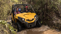 Mighty Mud Track - BUGGIES, Greymouth, 4WD, ATV & Off-Road Tours