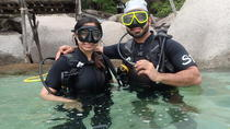 PADI Discover Scuba Diving in Koh Tao - half day and two dives, Surat Thani, Scuba Diving