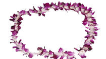 Traditional Lei Greeting on Arrival in Maui, Maui, Airport & Ground Transfers