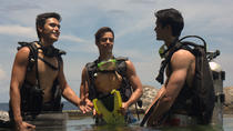 Full-Day Anilao Diving Package from Manila, Manila