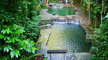 Private Shore Excursion of Hidden Valley with Lunch, Manila, Ports of Call Tours
