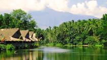 Private Shore Excursion of Villa Escudero with Lunch, Manila, Ports of Call Tours