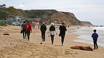 Orange County Art Tour: Laguna Beach, Laguna Beach, Literary, Art & Music Tours