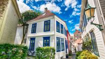 Cruise Special - Bergen private city tour, Bergen, Private Sightseeing Tours