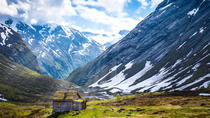 Cruise Special: Bergen to Geiranger, The Scenic Mountain route, Bergen, Private Sightseeing Tours