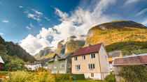 Scenic private tour to the World Heritage site Naeroyfjord, and Flaam, Bergen, Private Sightseeing ...