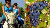 Horseback Riding Tour in a Natural Park and Wine tasting in Penedés, バルセロナ