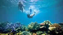 Snorkeling around Koh Rong Samloem Island, Sihanoukville, Day Cruises