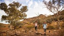 Flinders Ranges 3 Day 4WD Small Group Eco Tour from Adelaide, Adelaide, Multi-day Tours