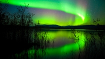 4-tägige Northern Lights Tour in Whitehorse ab Vancouver, Vancouver, Multi-day Tours