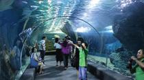 Billet d'admission au Sea World Bangkok Ocean World, Bangkok, Billetterie attractions