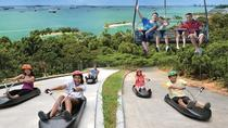Skyline Luge Sentosa-Eintrittskarte, Singapore, Attraction Tickets