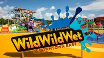 Wild Wild Wet Admission Ticket, Singapore, Water Parks