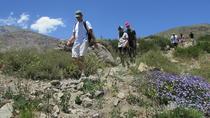 Andes Day Hike & Artisan Village, Santiago, null