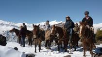 Mountain Horseback Riding Tour from Santiago, Santiago, Horseback Riding