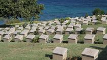 6-Night ANZAC Day and Troy Tour from Istanbul: ANZAC Dawn Service, Gallipoli, Istanbul and Ancient ...