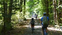 Timber Rail Trail Tour, Portland, Cultural Tours
