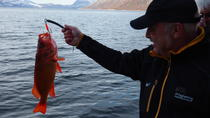 Deep Sea Fishing - Open boat, Nuuk, Day Cruises