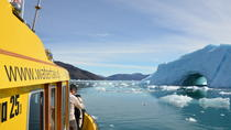 Fiord Adventure - Private charter 1-6 Pass - Cabin boat, Nuuk