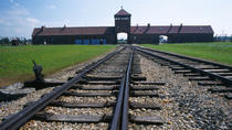 Auschwitz-Birkenau Small-Group Tour from Krakow, Krakow