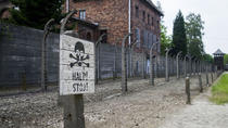 Educational Auschwitz Birkenau Study Tour with Private Transport , Krakow, Private Sightseeing Tours