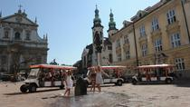 Krakow City Sightseeing Private Tour by Eco Friendly Electric Car With Live Guide, Krakow, Day Trips