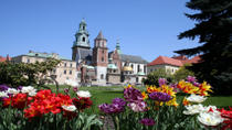 Small-Group Krakow Old Town Walking Tour Including Rynek Glówny, Mariacki and Wawel Cathedral,...