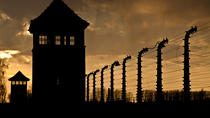 Super Saver: Auschwitz-Birkenau Half-Day Tour plus Wieliczka Salt Mine Half-Day Tour, Krakow, ...
