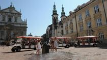 Tour Privato Turistico di Cracovia in Auto Elettrica Ecologica con Guida, Krakow, Private Sightseeing Tours