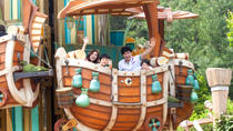 Admission to Everland Theme Park or Caribbean Bay Water Park with Transport from Seoul, Seoul