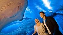 Das Aquarium von Western Australia (AQWA): Allgemeines Eintrittsticket, Perth, Attraction Tickets
