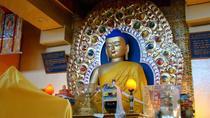 Dharamshala Sightseeing Tour, Dharmasala, Day Trips