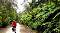 Great Southern Getaway, Melbourne, Bike & Mountain Bike Tours