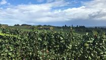 Eugene Private Wine Tour, Eugene, Wine Tasting & Winery Tours
