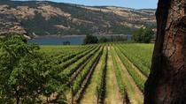 Full Day Multnomah Falls Gorge Waterfalls Tour and Wine Tasting Combo, Portland, Wine Tasting & ...