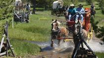 Old West Wagon Train Experience!, Eugene, Multi-day Tours