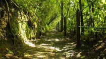 Admission Ticket Monteverde Biological Reserve