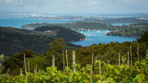 The Best of Waiheke: Ziplining, Wine Tasting and Vineyard Lunch, Auckland