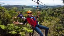 Waiheke Island Exploration and Zipline Day Trip from Auckland, Auckland, null